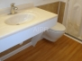 Wall Hung Toilet & Accessible Sink