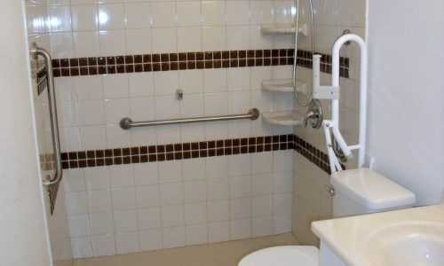 Accessible Shower Remodel San Diego